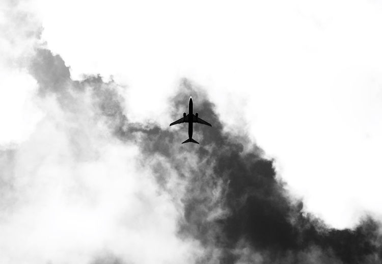 Budapest Hungary Silhouette Silhouettes Air Vehicle Airplane Black And White Blackandwhite Bnw_captures Bnw_collection Bnw_life Bnw_society Bw_collection Bw_lover Cloud - Sky Flying Low Angle View Monochrome Monotone No People Sky Transportation