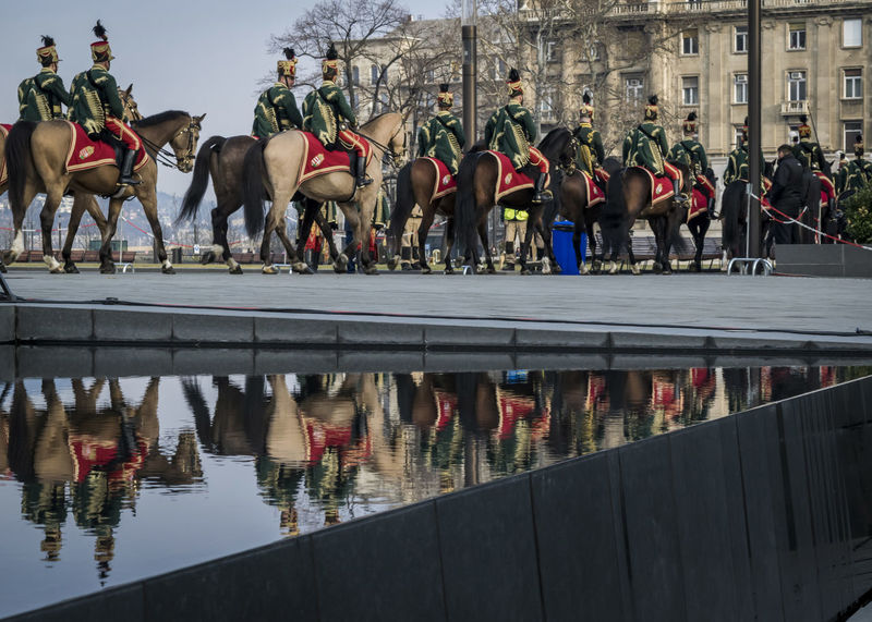 Procession of Hussars on horses during the 15 March military parade in Budapest, Hungary. Hussar cavalry in traditional festive uniform. 15 March Budapest Holiday Horses Hungary National Patriotic Uniform Cavalry Ceremony Festive House Hungarian Hussars Mammal Men Military Outdoors Parade Parliament People Procession Reflection Traditional Water