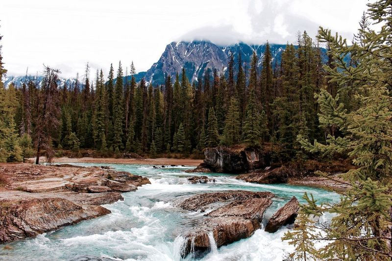 The Great Outdoors With Adobe Outdoors Nature Wild Water Falls Rock Mountains Blue Glacial Canada Alberta Rocky Mountains River Trees Blue Green Cloudy Clouds