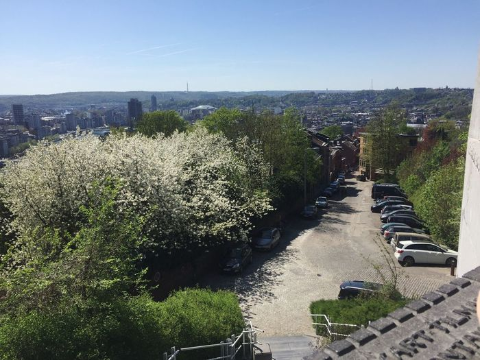 19/04/2018 Street Belgium Liège Water Sky Plant Nature Day Sea Sunlight Protection Horizon Grass Beauty In Nature Footpath Growth High Angle View Outdoors No People Clear Sky Land