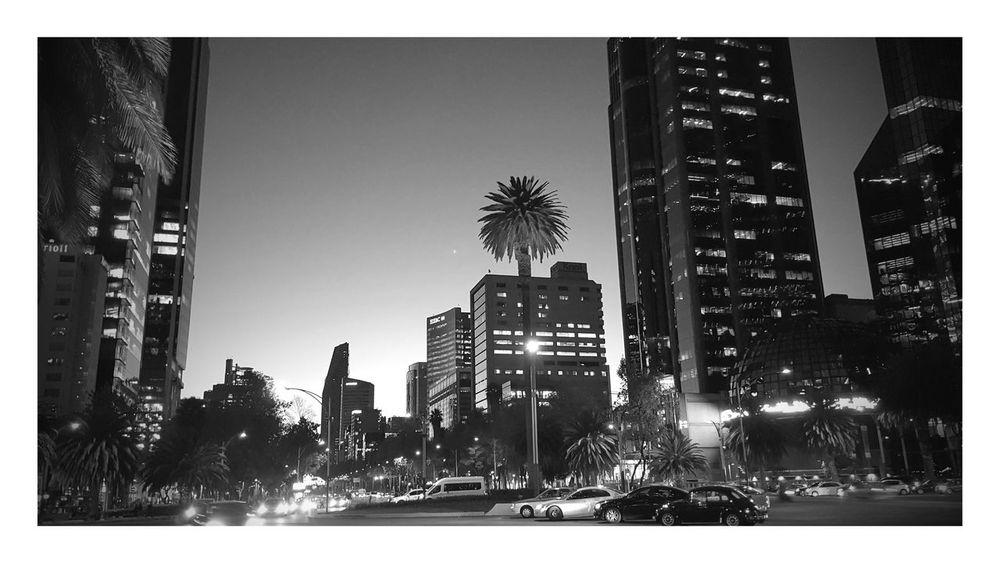 Un hermoso atardecer en la Ciudad de México. Cdmx Paseo De La Reforma Ciudad De México Atardecer
