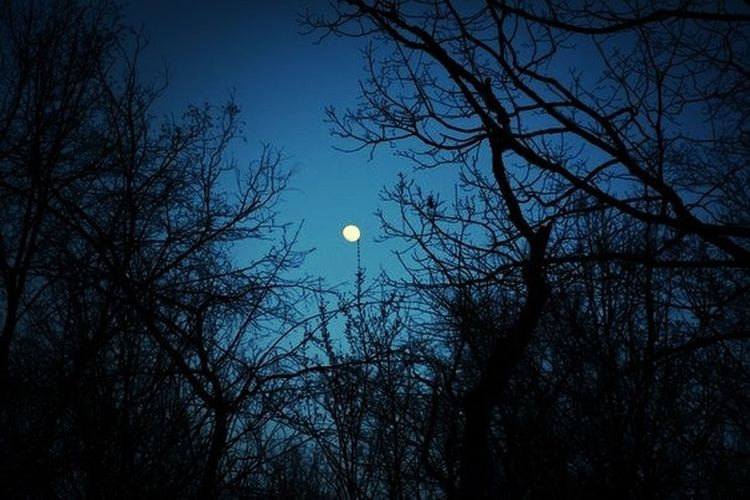 Nigth  Winter Moon Old Foto