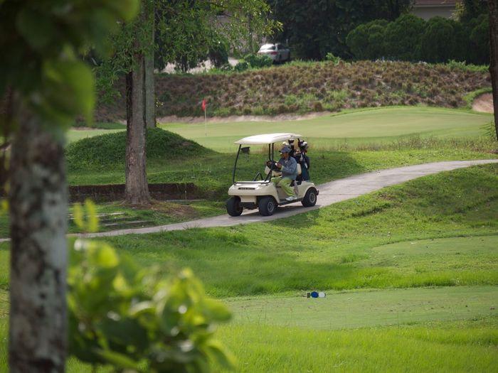Man Driving Golf Cart On Golf Course