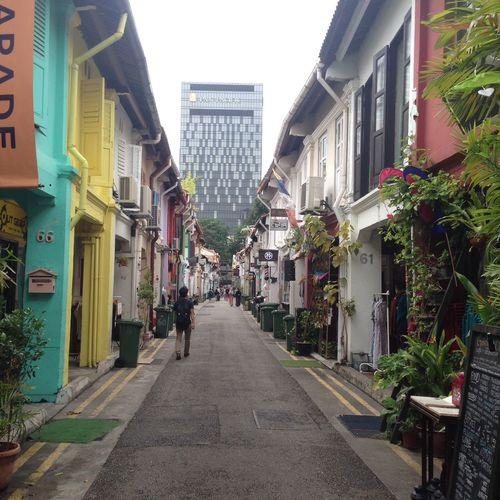 Explore Explorer Haji Lane, Singapore Sights Sightseeing Singapore Street Tourist Tropical Plants