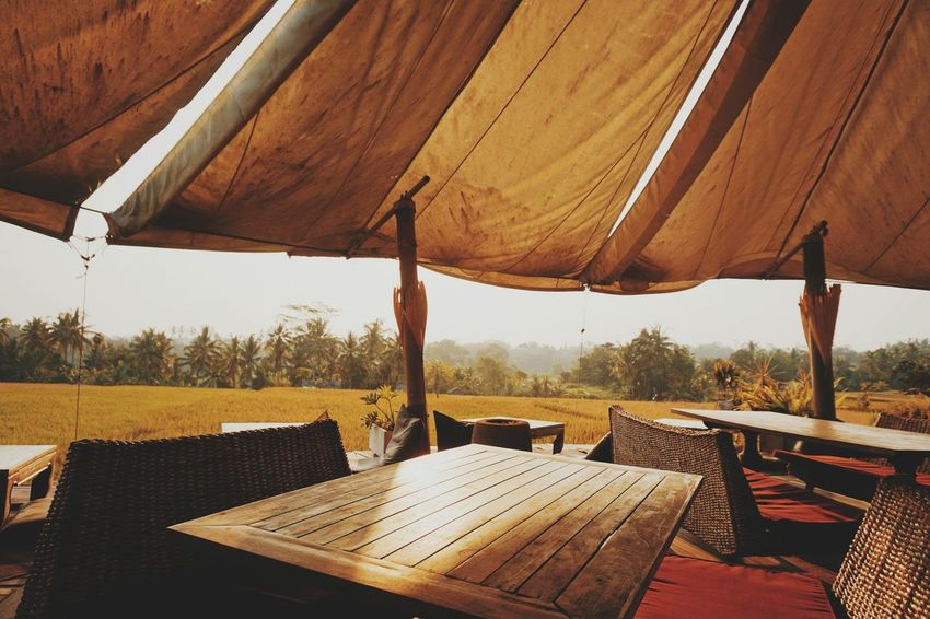side of the ricefield Rice Paddy Rice Field Ubud Nature Furniture Table Chair Food And Drink Sunshade EyeEmNewHere A New Beginning Autumn Mood