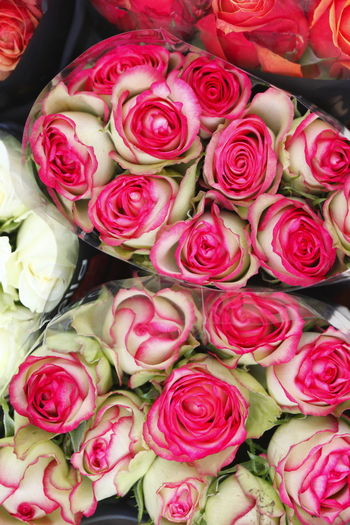 Fower Bouquet