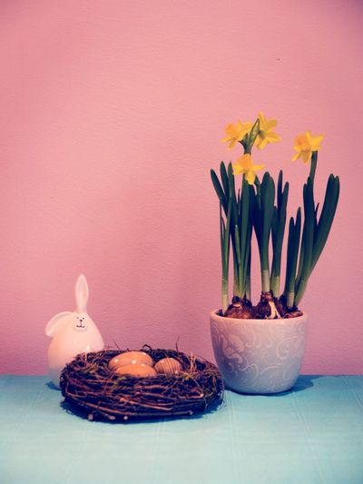 Easter Bunny With Egg In Nest By Potted Plant Against Pink Wall