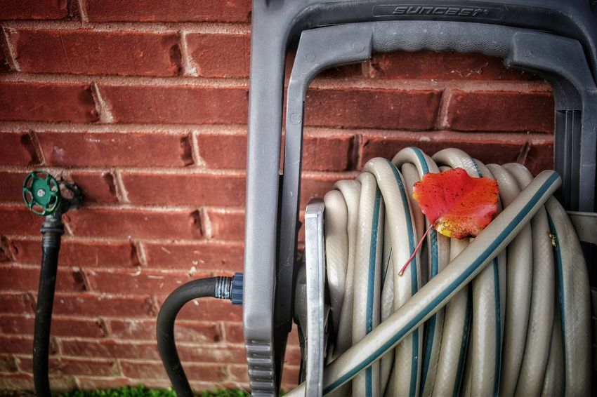 At Home Brick Close-up Detail Fall Leaf Full Frame In The Yard Metal Nature No People Outdoors Outside Textured  Wall Wall Water Waterhose Wound