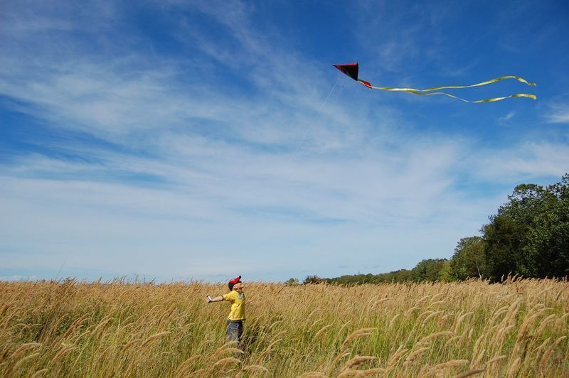 Kite and boy