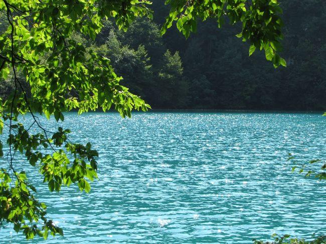 Nature Plitvice National Park Plitvicelake