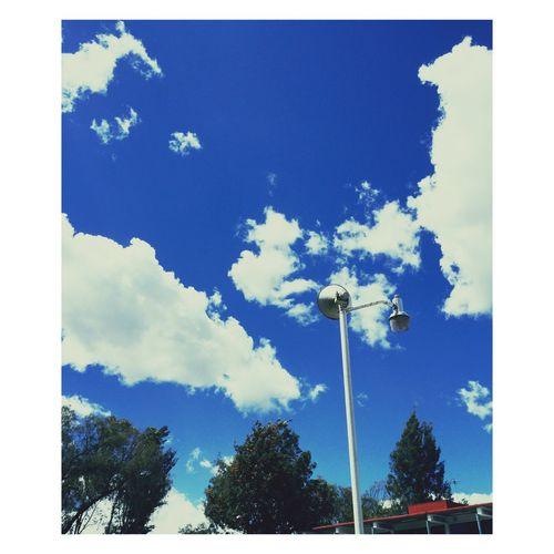 ☁️☁️👌🌎 Enjoying The Sun