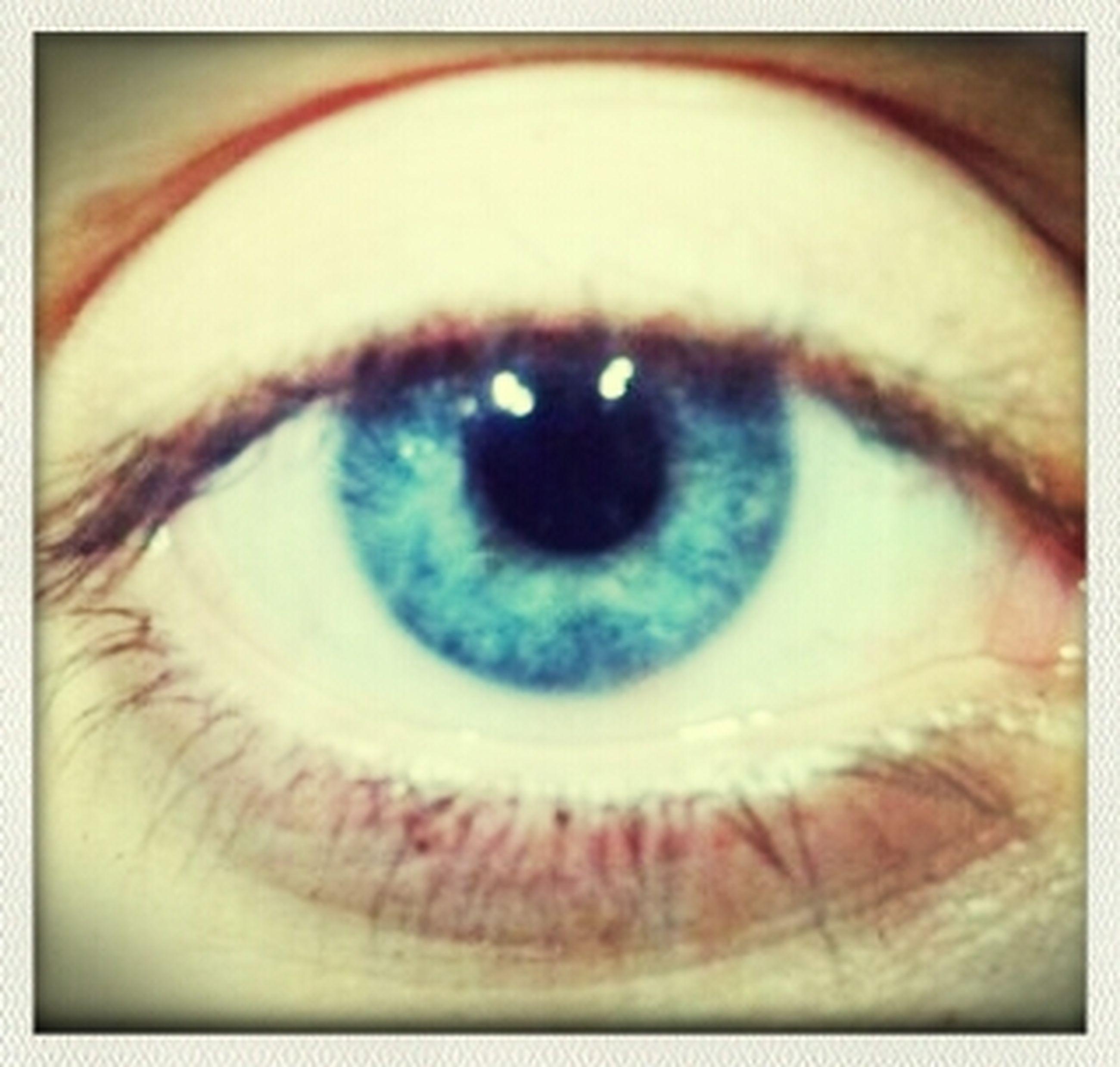 human eye, close-up, eyelash, eyesight, sensory perception, extreme close-up, part of, indoors, iris - eye, eyeball, auto post production filter, unrecognizable person, human skin, portrait, extreme close up, transfer print, full frame