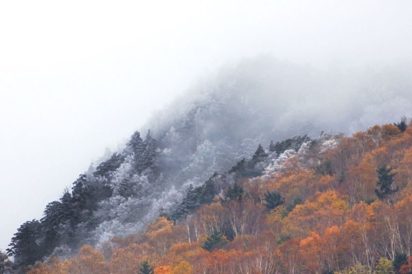 Winter & Autumn Mountain Mountain View Landscape Nature Beauty In Nature EyeEm Nature Lover EyeEm Best Shots Landscape_photography EyeEm Best Shots - Landscape Dedicate To @intreccio ISOPIX