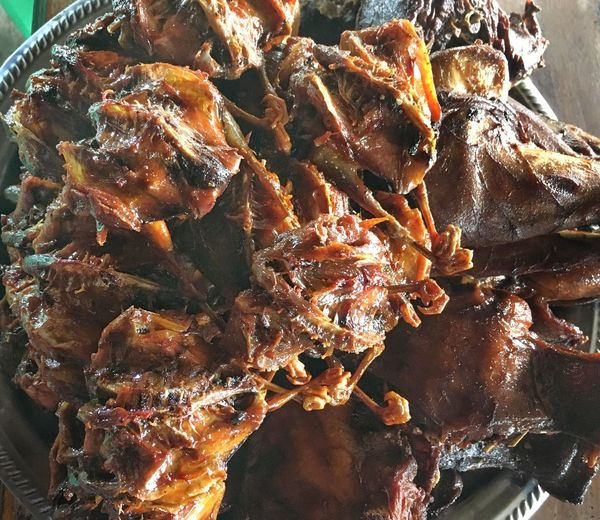 Food And Drink Food Close-up Freshness Healthy Eating No People Ready-to-eat Outdoors Nature Day Bird Fowl Streetfood Worldwide