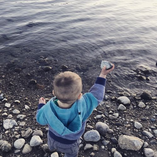 Rear view of boy holding pebble while standing at beach