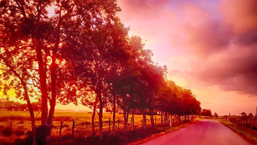 Dirtroad Sunset Backroad Beauty In Nature Dirtroadanthem Dirtroads Landscape Nature Scenics Sky Sunset EyeEmNewHere The Great Outdoors - 2017 EyeEm Awards