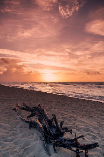 Sunrise and Driftwood Cloudscape Dramatic Sky Orange Sky Wood Grain Beach Beauty In Nature Cloud - Sky Dramatic Sky Driftwood Dusk Horizon Horizon Over Water Land Nature No People Ocean Outdoors Sand Scenics - Nature Sea Sky Sunset Tranquil Scene Tranquility Water