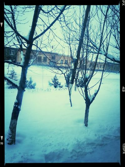 Cold Winter ❄⛄ I Want SUMMER!
