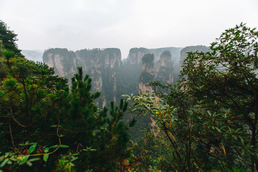 Zhangjiajie National Forest Park is a unique national forest park located in Zhangjiajie City in northern Hunan Province UNESCO, Avartar movie CG location ASIA CGI Hunan National Park Natural Nature Rock WuLingYuan ZhangjiajieNationalPark Beatiful Place Beauty In Nature China Chinese Cliff Forest Geology Landscape Location Mountain Park Tourism Travel Destinations Valley World Zhangjiajie