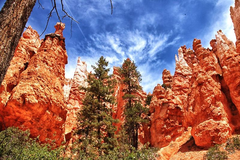 Mysterious Bryce Canyon. Rock Formation Sky Rock - Object Low Angle View Physical Geography Nature No People Day Outdoors Travel Destinations Beauty In Nature Cloud - Sky Rock Hoodoo Sunlight Tranquility Scenics Mountain Landscape Arid Climate Tree Eduardushakov Easystreetworld Tranquil Scene