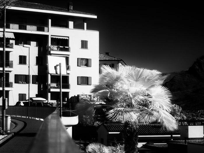 Shot with Olympus OM-D E-M10, 40-150mm @ 40mm with Hoya R72 infrared filter f/6.3, 8 sec, ISO 200 Architecture Bnw Bnw_captures Bnw_collection Building Exterior Built Structure City Day High Contrast Infrared Infrared Photography No People Outdoors Palm Palm Trees R72 Sky