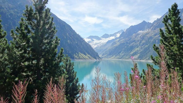 Zillertal Schlegeisspeicher Schlegeis Lake View Landscape Lake Nature Reservoir HydroElectric Hydroelectricpowerplant Bushes Blue Lake Blue Sky Mountains Mountain View Border Italy Austria Glacier Ice Snow Lake Side Tree Fir Water Reflections