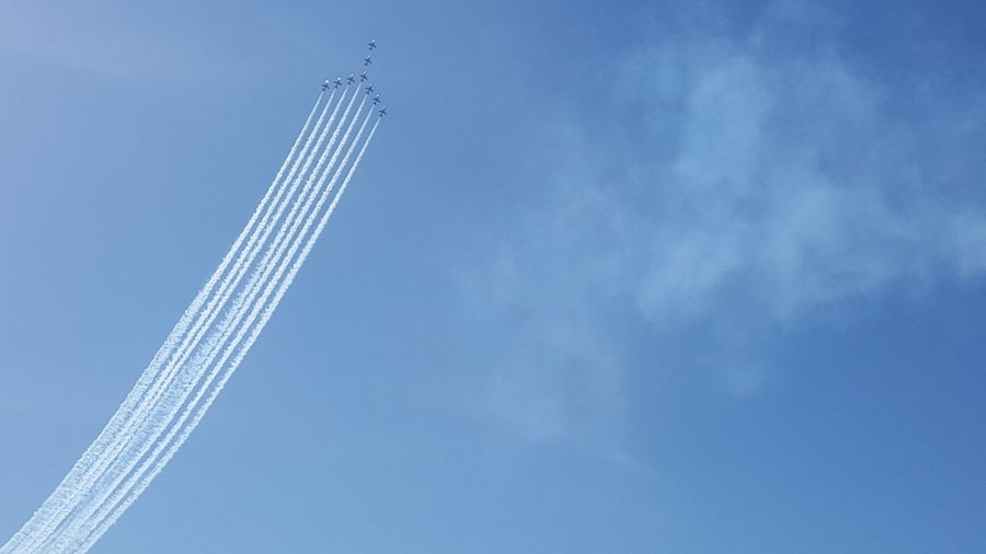 Red Arrows Red