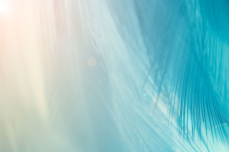 Nature Backgrounds Sunlight Blue Sky Abstract Environment No People Window Blurred Motion Defocused Fog Motion Rain Tranquility Wet Light - Natural Phenomenon Outdoors Day Abstract Backgrounds Lens Flare Wind