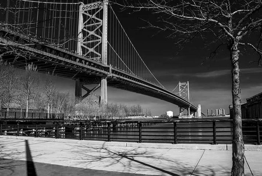 The majestic Ben Franklin Bridge captured in black and white in philadelphia, pennsylvania. Bridge - Man Made Structure Connection Architecture Built Structure Travel Destinations Engineering Transportation Tourism Travel Bare Tree Famous Place Suspension Bridge City Outdoors Day Sky Footpath International Landmark City Life Long Urban Landscape Philadelphia Pennsylvania Canon_official Canonphotography Waterfront