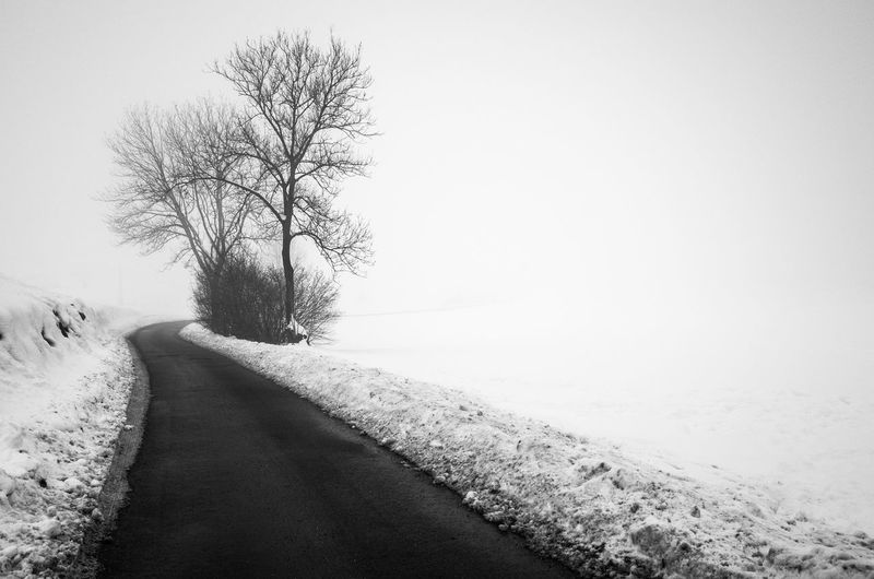 Loneliness Road Südtirol Winter Wintertime Beauty In Nature Blackandwhite Cold Cold Days Cold Temperature Countryside Fog Foggy Foggy Morning Landscape Nature Snow Snowy The Way Forward Weather Winter Winter Trees Shades Of Winter