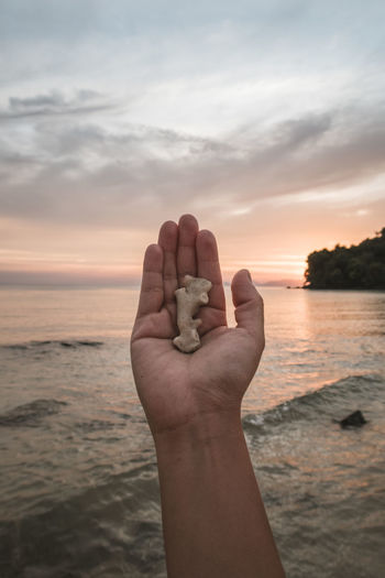 Human hand holding sea against sky during sunset
