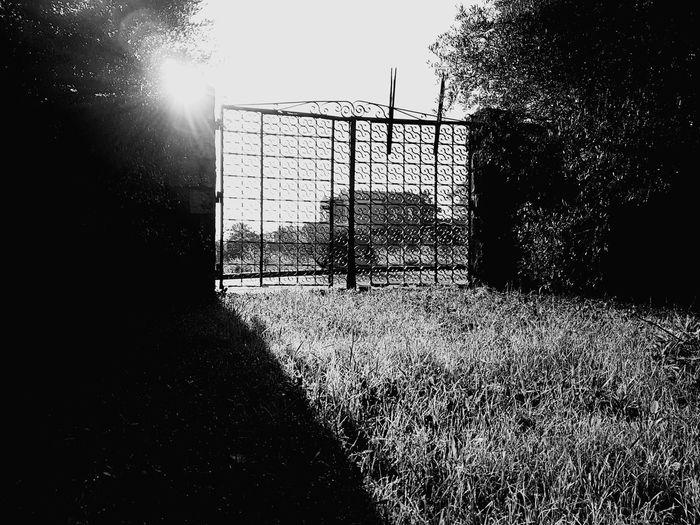 Fence Sky No People Nature Outdoors Day Oldgate Old Gate Landscape Morning
