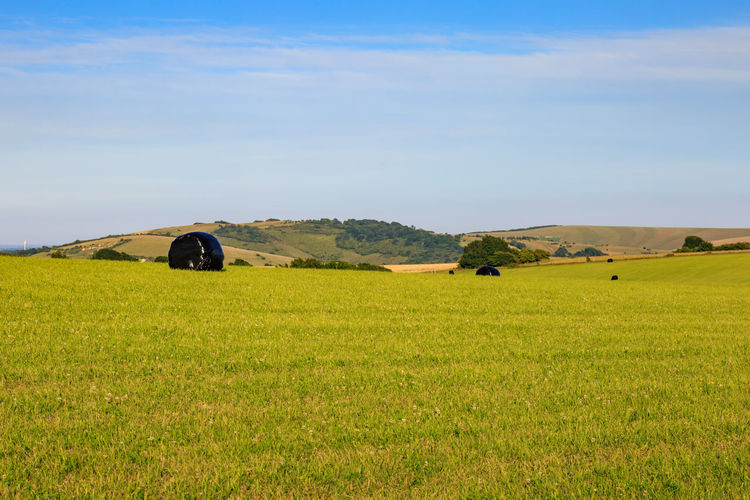 Farm Farmland Green Industry Agriculture Beauty In Nature Countryside Crops Day Field Grass Harvest Haybales  Landscape Nature No People Outdoors Rural Scene Scenics Sky Summer Sussex Tranquil Scene Tranquility Weatherproof