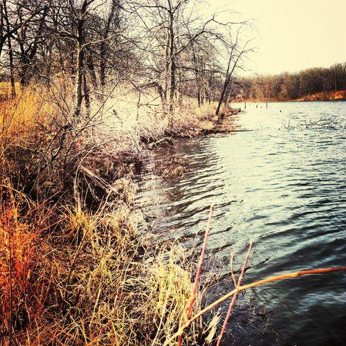 Enjoying The Sun Hanging Out Lakeside Like