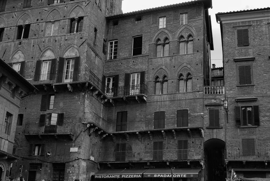 Siena Black & White
