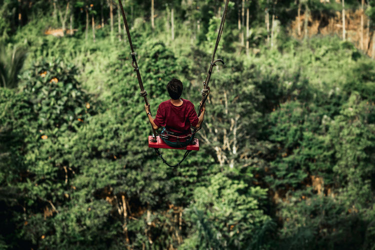 Rear view of man on swing at forest