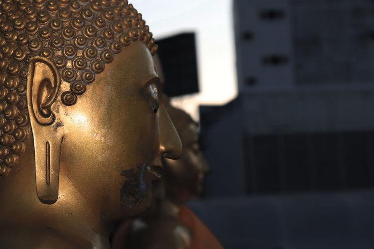 buddha in