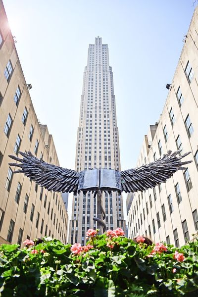 Art Display Wings Eagle Wings Architecture Built Structure Building Exterior Building Nature Sky Day City Clear Sky Plant No People Growth Outdoors Tower Office Building Exterior Flower Tall - High Low Angle View Sunlight Skyscraper