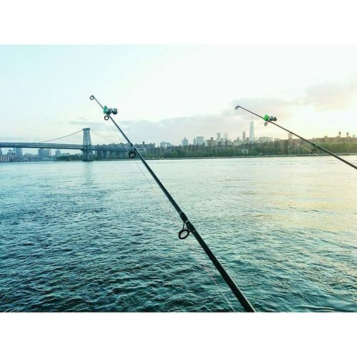 """""""Summer Afternoon—summer afternoon; to me those have always been the two most beautiful words in the English language.""""―Henry James NYC Fishing"""
