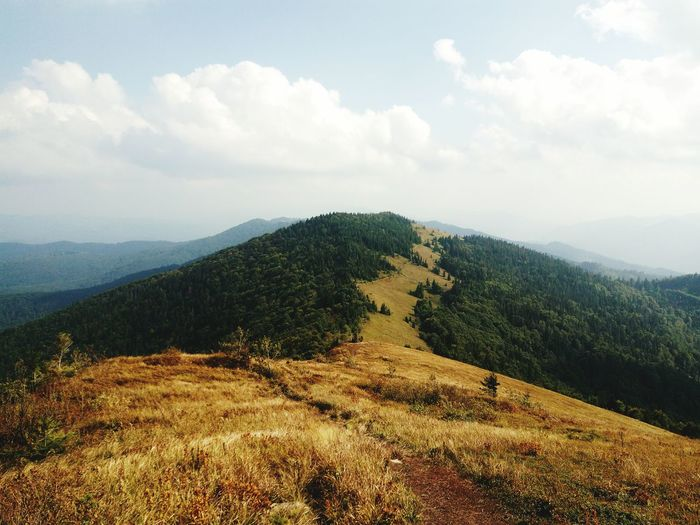 Travel Mountain Mountain Range Karpathian Karpaty Tourism Relaxation Landscape Non-urban Scene Travelphotography Nature Beauty In Nature Tranquil Scene Majestic Day Outdoors Nature Green Green Color Rear View Scenics Photography Trip Sun View