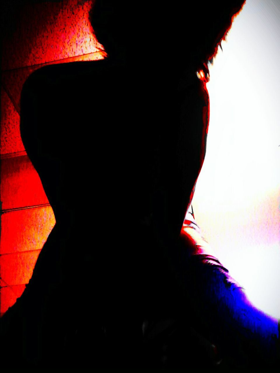 silhouette, one person, red, lifestyles, real people, women, human body part, indoors, close-up, adult, people, day