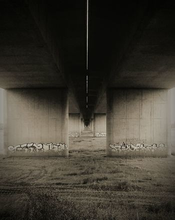 Under The Bridge Grass Black & White Deventer A1 Highway Road Graffiti Graffiti Art Graffiti Wall No People Architecture Outdoors
