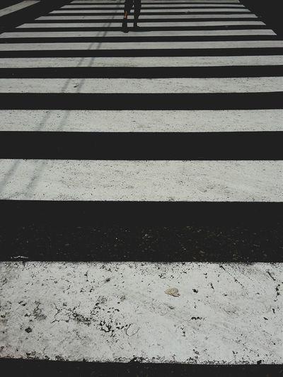 Crosswalk. ( 人行横道) Showcase March Street Photography EyeEm Lima-Perú People Crosswalk