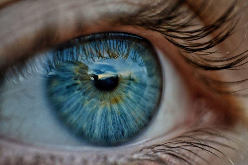 Blue Body Part Eye Close-up Human Eye Eyelash Extreme Close-up Macro Blue Eyes
