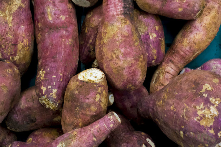 isolated fresh sweet potatoes (Ipomoea batatas) Is a plant that utilizes the root. Healthy Eating Freshness Organic Diet Delicious Nutrition Vegetable Ingredient Vegetarian Raw Food Sweet Closeup Natural Plant Object Nobody Group Assorted Sweets Tasty Cooking Cuisine Health Material Salad Gourmet Eating Vitamin Root Isolated Isolated White Background Food And Drink Agriculture Cultivated Nature Harvested Traditional Market Red Pile Crop  Nutritious Whole Vitamins Food Backgrounds Large Group Of Objects Close-up Purple