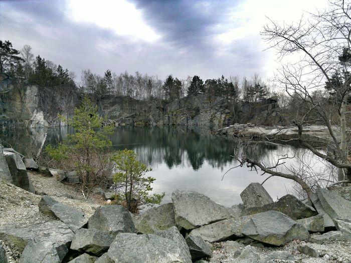 Walking Around Nature Water Reflections