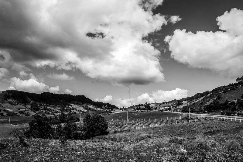 Creation Abandoned Places Boyacá, Colombia Colombia Grass Houses WeekOnEyeEm Animals Blackandwhite Canon Clouds Day Landsacpe Nature No People Outdoors White Wide Angle