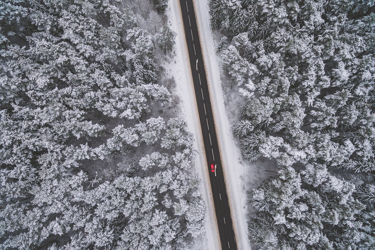 Red car | High Angle View Nature Snow Winter Transportation Day No People Cold Temperature Aerial View Outdoors Beauty In Nature Tree Close-up Snowing A Bird's Eye View Drone  Dronephotography Kaunas Kacergine Phantom Phantom 3 Phantom 3 Advanced Aerial Photography Fresh On Market 2016