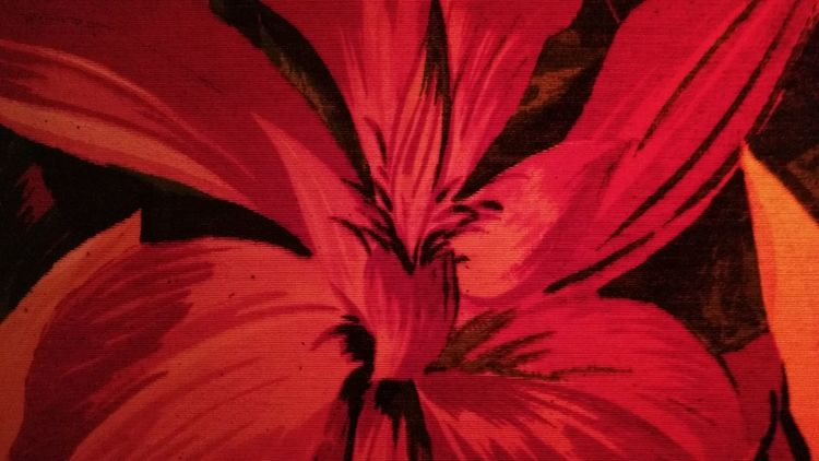 Red Textile Abstract Textured  Backgrounds Flower Drawing