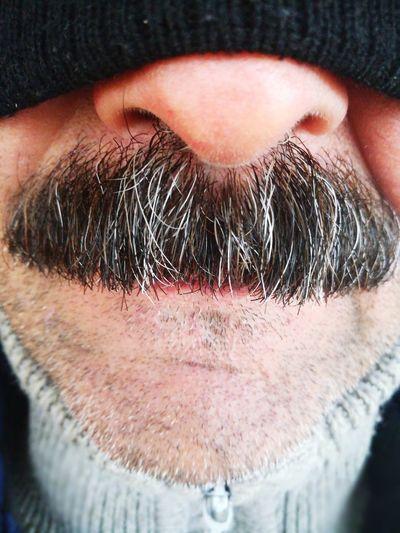 Men Beard